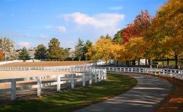 Kentucky-Pferden-Bauernhof Stockfotografie