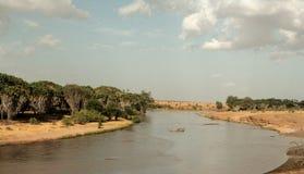 Kenya östliga Tsavo - nationalpark och floden royaltyfria foton