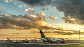 Kenya Airways Dreamliner Royaltyfri Bild