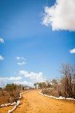 Savana road Stock Photos