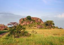 kenya krajobraz Zdjęcia Stock