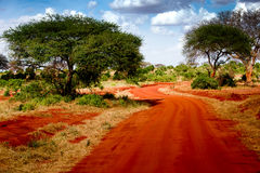Kenya road. In red color royalty free stock photos