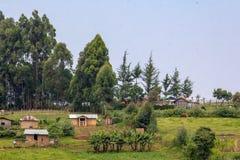 Kenyan Farmland imagen de archivo libre de regalías