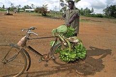 Kenyan man transporting bananas on bike royalty free stock photos