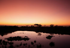 Kenyan sunrise Stock Photos