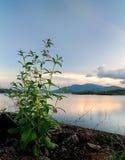 Kenyir lake large man make lake. Sunset by the overflow dam on look over the lake Royalty Free Stock Photos