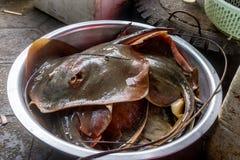 Kep,柬埔寨 库存图片