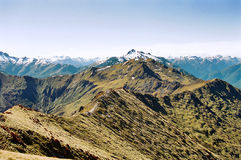 kepler新的跟踪西兰 免版税库存图片