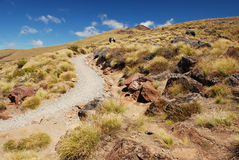 Kepler Track Royalty Free Stock Images