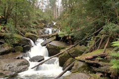 Keppel Falls Stock Photo
