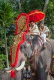 KERALA, ÍNDIA - janeiro, 17: Festival do templo de Pooram em janeiro, Fotografia de Stock Royalty Free