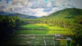Kerala image stock
