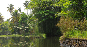 Kerala backwaters. Morning haze through the Kerala canals lined with luxuriant vegetation Stock Photos