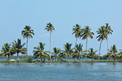 Kerala backwaters Royalty Free Stock Photo