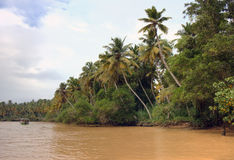 Kerala backwaters. Kerala, India Stock Photography