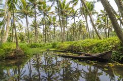 Kerala backwaters. Scenery with palm trees and sunken canoe, India Royalty Free Stock Photo