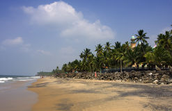 Kerala beach, India. With mosque and palms stock photos