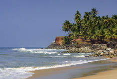 Kerala beach, India. With ocean's waves palms stock photography