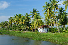 Kerala canal. Coco trees reflection and house at back waters of Kerala, India Royalty Free Stock Photography