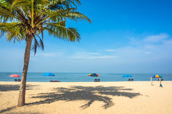 Kerala, India. Vacation in exotic country. Beautiful landscape with palm tree, white sand and sun loungers on the background of sea and blue sky. Kerala, India Royalty Free Stock Image