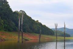 Kerala krajobraz - Periyar jezioro i park narodowy, Thekkady, Kerala, India Obrazy Stock