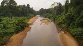 Kerala River. Located in Achankovil Forest Stock Photography
