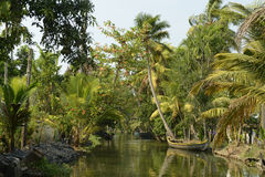 Kerala stat i Indien Arkivbilder