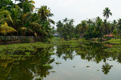 Kerala state in India Royalty Free Stock Image