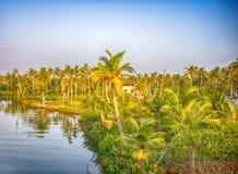 Kerala-Stauwasser lizenzfreie stockfotografie
