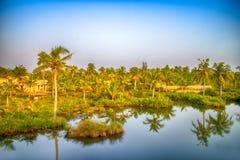 Kerala stojące wody Obrazy Stock
