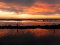 Kerala stojące wody, India Obrazy Royalty Free