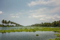 Kerala waterways and boats Stock Photography