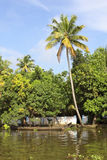 Keralan backwaters Royalty Free Stock Image