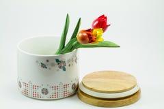 Keramikglas mit den Blumen lokalisiert auf weißem Hintergrund Lizenzfreies Stockbild