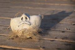 Keramische Maske auf dem hölzernen Hintergrund Stockfoto