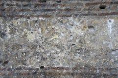 Keramische tegel Stock Afbeelding