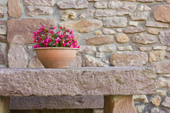 Keramischer Blumen-Potenziometer Stockbilder