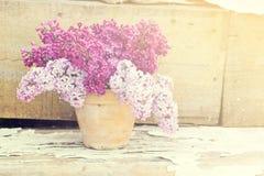 Keramischer Topf mit einer Niederlassung der lila Blume auf hölzernem Hintergrund Stockbilder