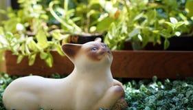 Keramisches oben schauen der Katze mit grünem Hintergrund Stockbilder