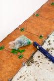 Keramisches tliles Legen Lizenzfreie Stockbilder