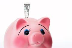 keramisk piggy pink för grupp Arkivfoton