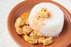 Keramisk platta med rice och höna i curry Royaltyfria Foton