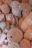 Keramisk samling Arkivbild