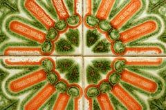 keramisk tegelplatta Fotografering för Bildbyråer