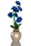 keramisk vase Royaltyfria Bilder