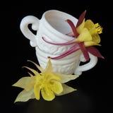 Keramisk vit kopp med blommor på en svart bakgrund Arkivfoto