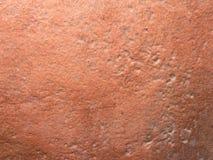 Keramiska beigea eller r?da bruna tegelplattor i dusch arkivfoton