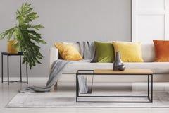 Keramiska vaser på den enkla träkaffetabellen i stilfull vardagsrum med den stora bekväma soffan med färgrika kuddar, verkliga fo royaltyfria foton