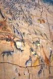 Keramiskt konstverk med fisken i domkyrkan Santa Maria (La Seu), Palma, Mallorca Royaltyfria Foton