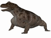 Keratocephalus - 3D Dinosaur Stock Photography